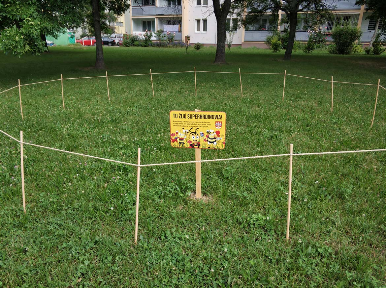 koseny-nekoseny-travnik-jun-park-ostredky-zelen-v-meste-pavlech-architekti