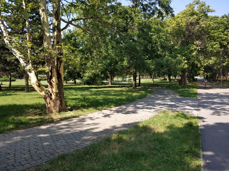 koseny-nekoseny-travnik-ostredky-jul-zelen-v-meste-pavlech-architekti