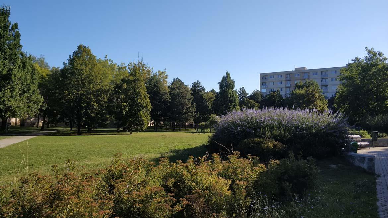 koseny-nekoseny-travnik-september-ostredky-park-zelen-v-meste-pavlech-architekti