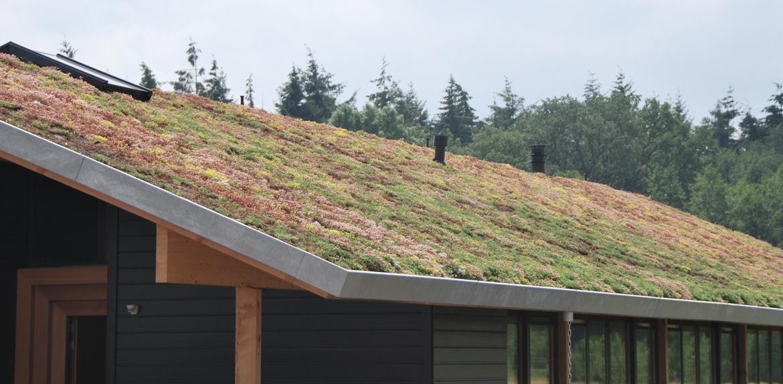 002-sikma-vegetacna-strecha-rodinny-dom