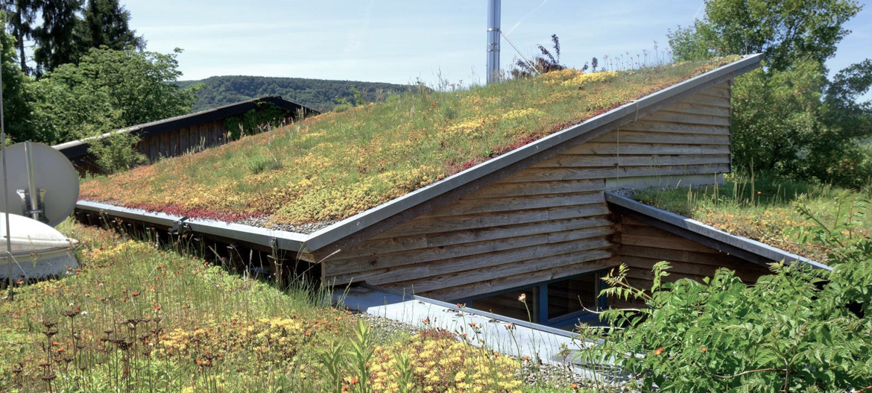 003-sikma-vegetacna-strecha-pultova-rodinny-dom